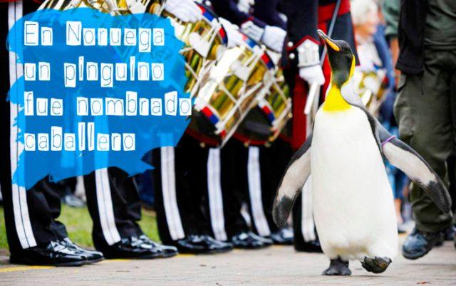 pinguino al lado de soldados