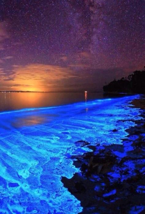 Playa bioluminiscente