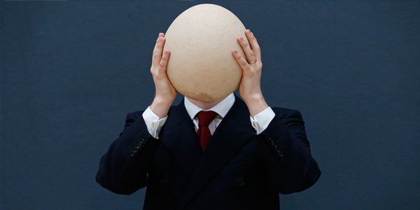 huevo gigante subasta