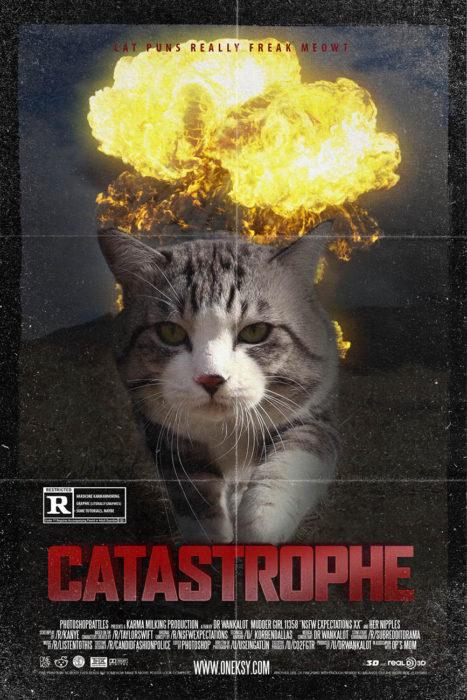 gato editado en la portada de una película llamada catástrofe