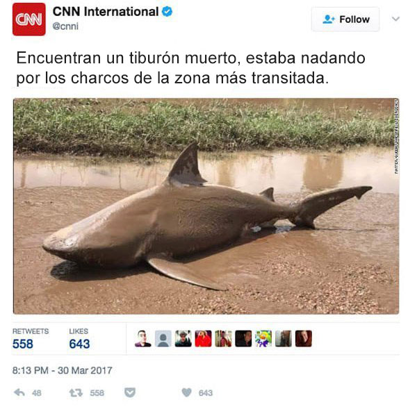 Noticias cnn