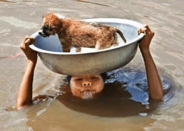 fe humanidad 4