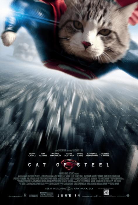 gato editado cual superman