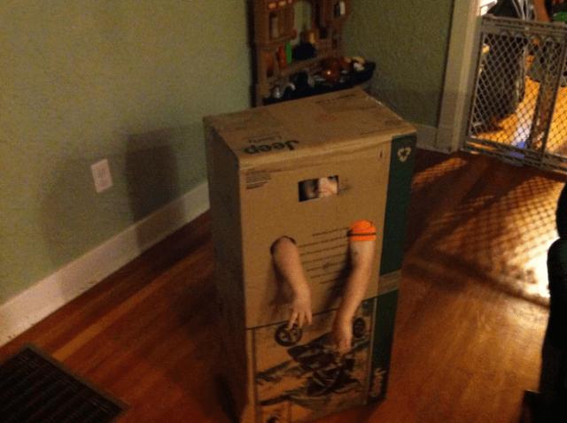 niños prioridades caja gato