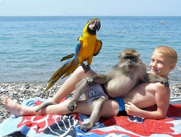 niño en la playa con cacatúa y mono