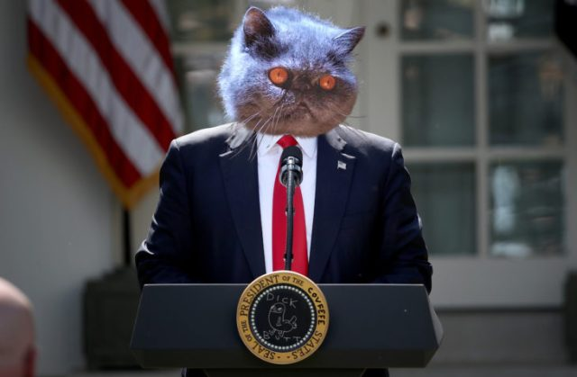 Presidente Gatrump