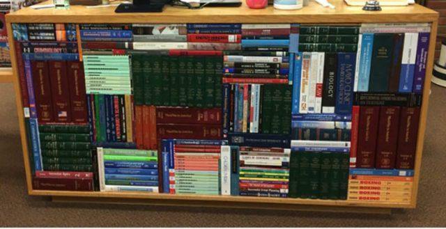 Libros acomodo encajas perfecto