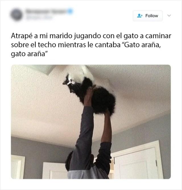 el gatito no la ésta pasando bien