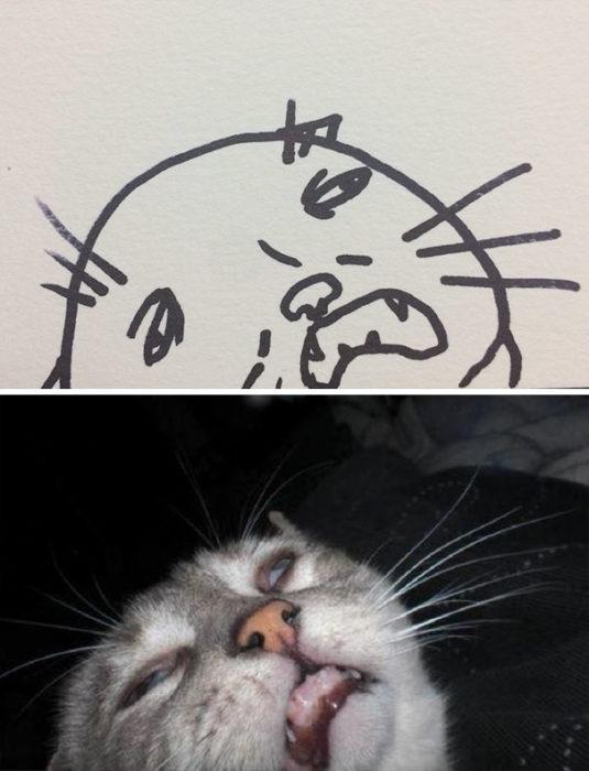 Dibujos realistas gatito - semeja drogado