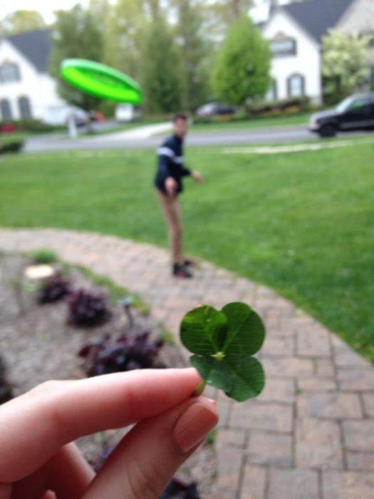 Trebol de cuatro hojas mientras lo golpea un frisbee