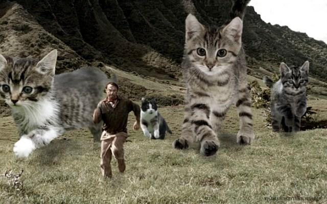 gatos colosos persiguiendo a humanos