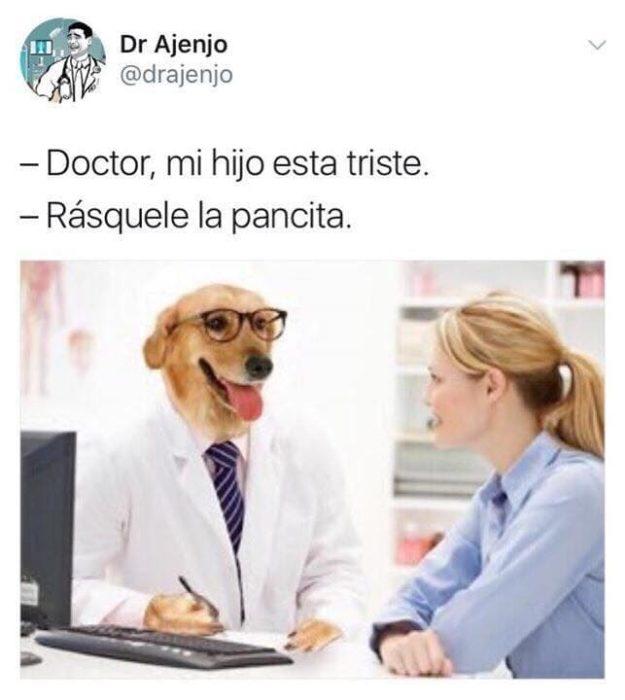 rásquele la pancita memes Dr. perro