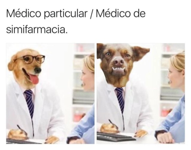 chilaquil memes Dr. perro