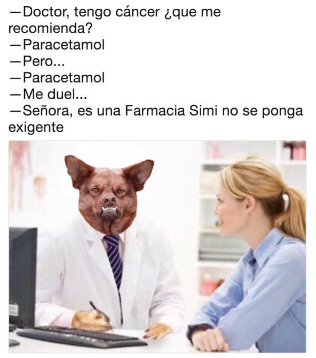 chulaquil paracetamol memes Dr. perro