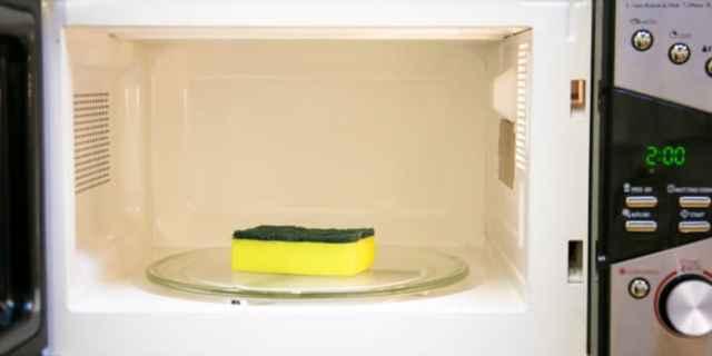 esponja micro ondas