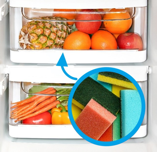 mantener verduras frescas