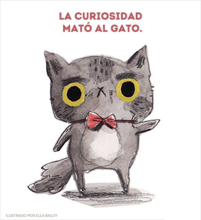 curiosidad gatito ilustración dichos