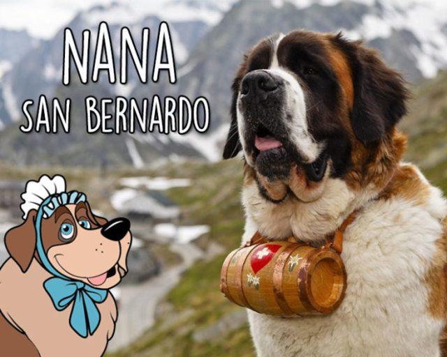 Nana San bernardo