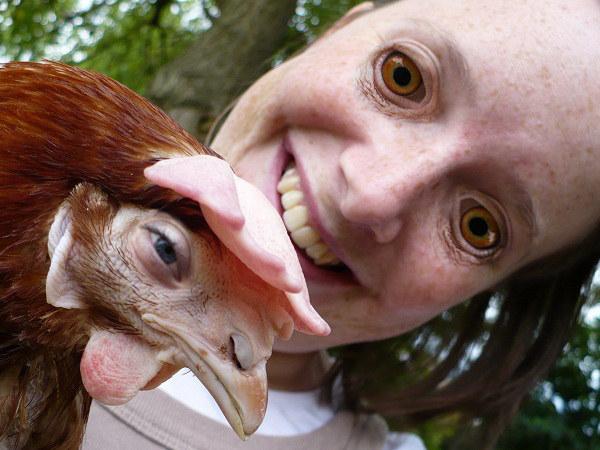 Face swap gallo