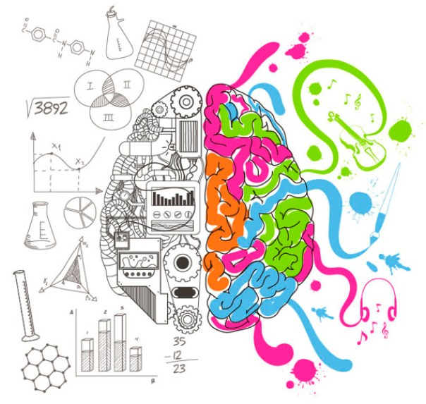 lado imperante del cerebro