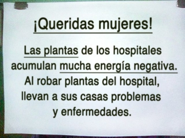 mujeres plantas hospitales