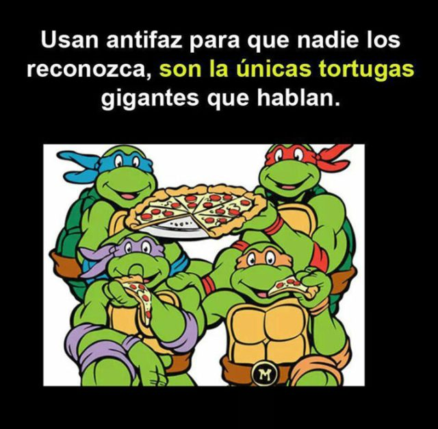 Tortugas con antifaz