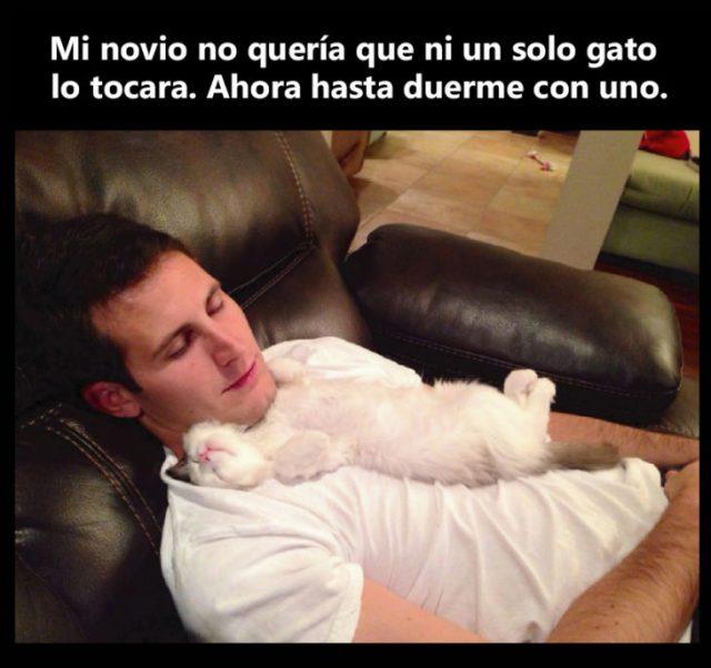 novio duerme con gato