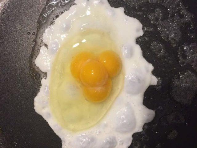 huevos múltiples yemas