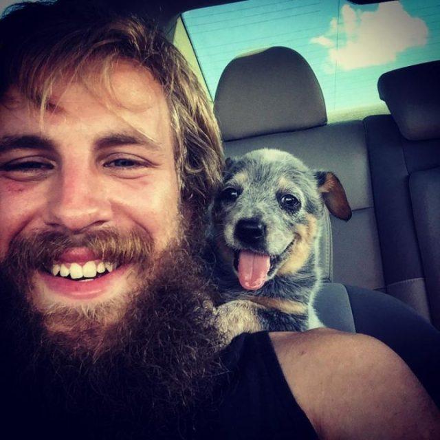 perrito feliz