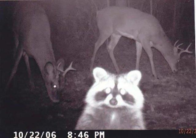 Selfie con los amigos