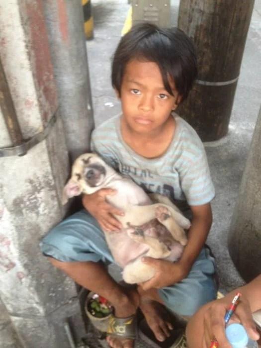 niño y perrito callejeros