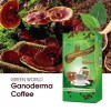 GANODERMA COFFEE 5269
