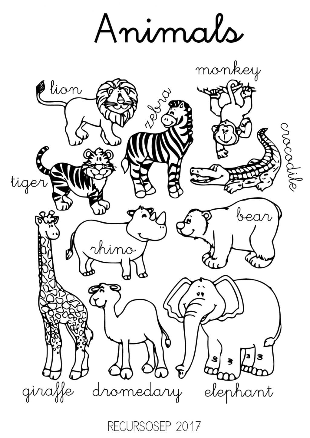 Life Science Animal Worksheets