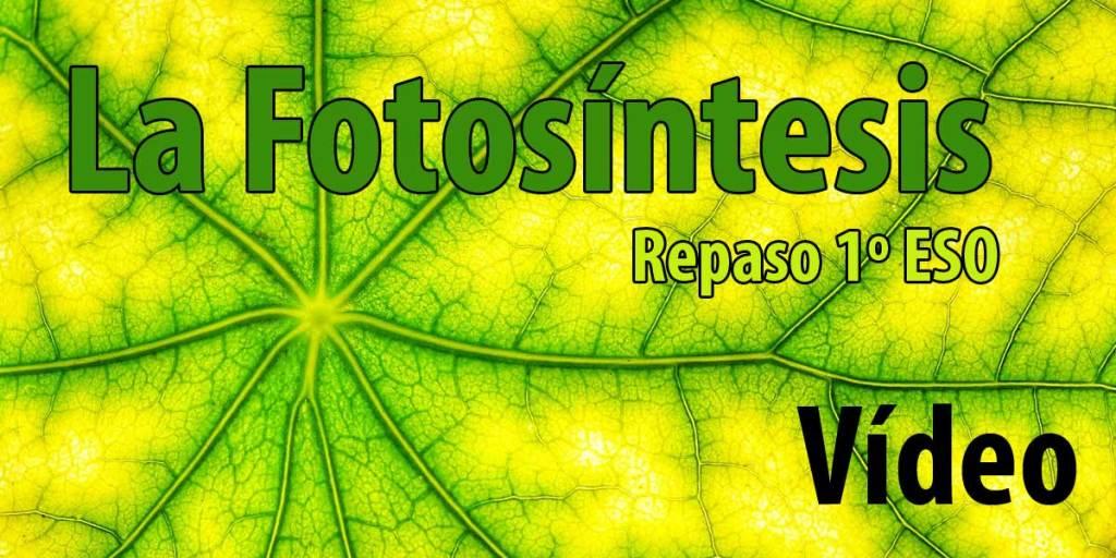 Repaso: LA FOTOSÍNTESIS 1º Biología