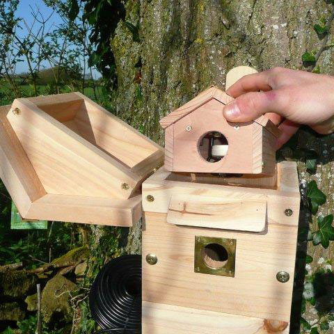 Nest box showing removable sections