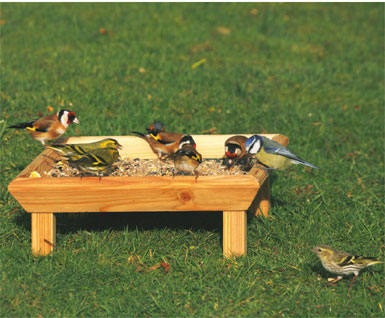 Square Ground Bird Table
