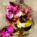 Digital illustration Bee and Flower Art