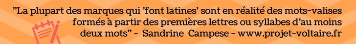 mot-valise enseigne Sandrine Campese projet voltaire