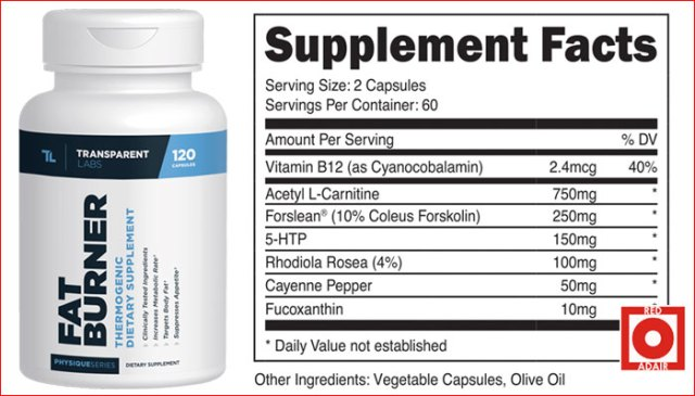 Physiqueseries fat burner ingredients for weight loss
