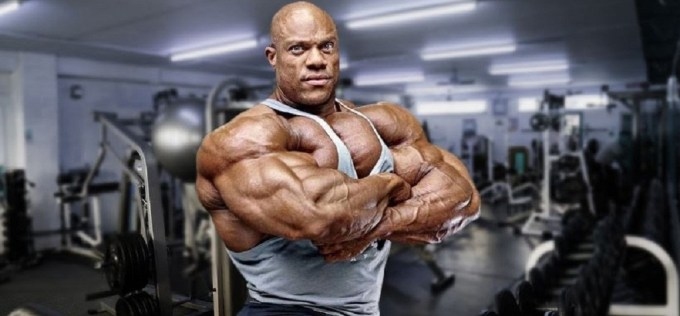 Top 5 Legal Steroids for Muscle Growth, Cutting and Strength