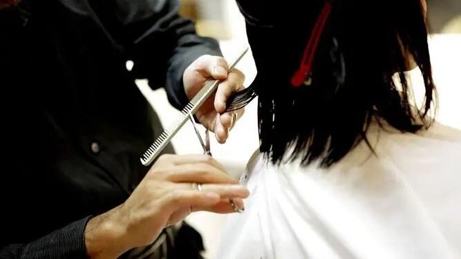 cortar-cabello-veces-previene-crecimiento_1345075626_97827986_667x375-2517626