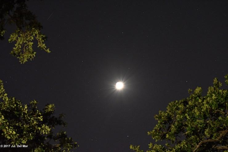 Moon Luna