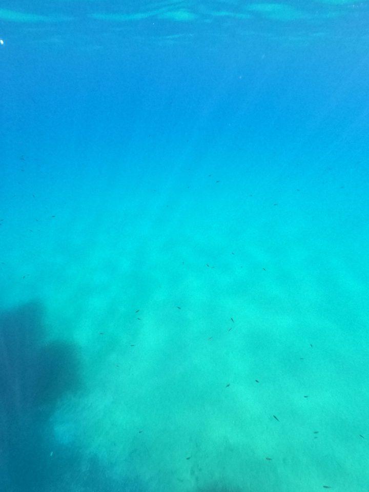 Elba redbetter spiaggia cavoli