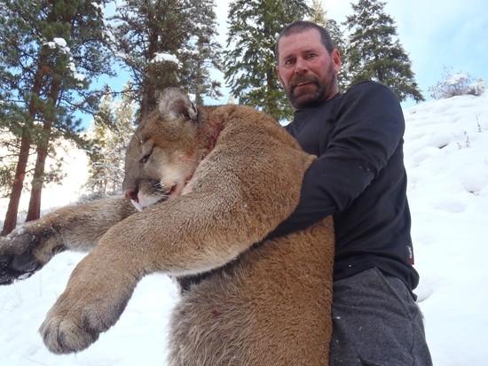 Breaks River Elk Missouri Hunting