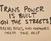 Trans power is built on the streets! Bread, Roses and Hormones needs your help