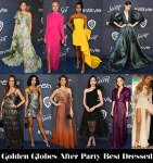 Who Was Your Best Dressed At The 2020 Golden Globe Awards After Parties?