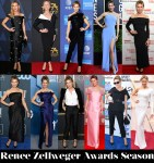 Which Was Your Favourite Renée Zellweger Awards Season Look?