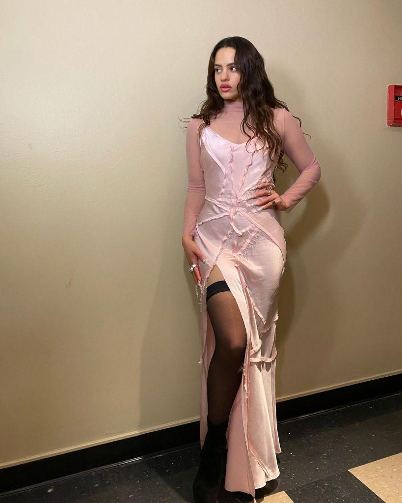 Rosalía, KES, Saturday Night Live, Rosalía KES, Rosalía SNL, Rosalía Pink Dress, Rosalía Bad Bunny SNL, KES Spring 2019,