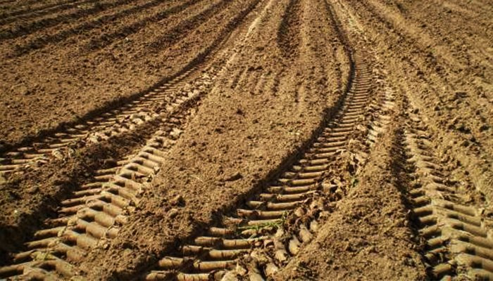 What Is Soil Compaction & How To Avoid it