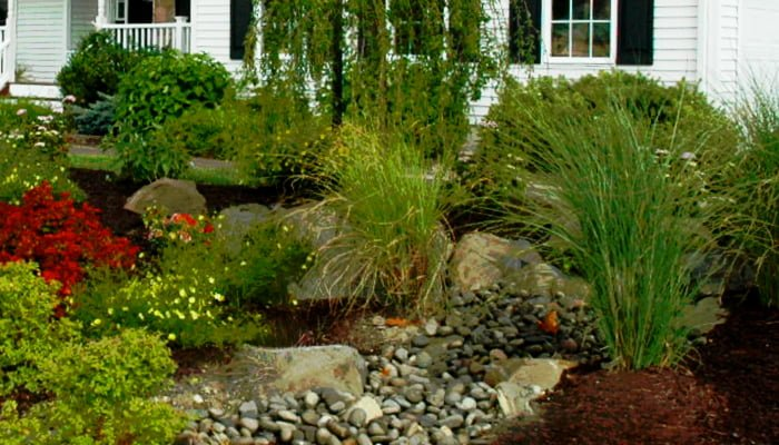 Landscaping That Can Reduce Summer Energy Costs